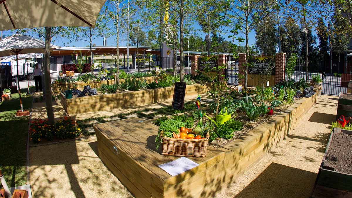Community Kitchen Garden