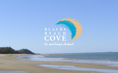Blacks Beach Cove Website